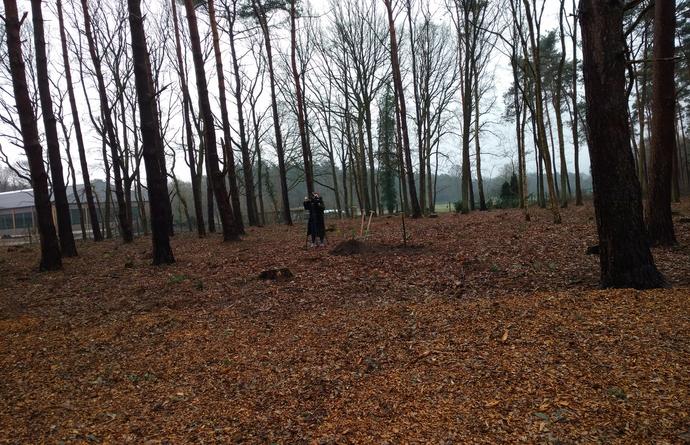 Natuurbegraafplaats te Halle-Zoersel